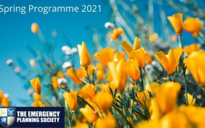 Spring Programme Launches